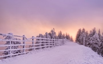 road, trees, snow, nature, forest, sunset, winter, landscape, the fence, romania, brasov