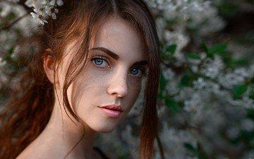 девушка, взгляд, рыжеволосая