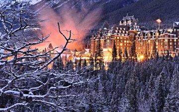 деревья, лес, ветки, здание, канада, отель, альберта, банф, провинция альберта, национальный парк банф, banff springs hotel, отель банф спрингс