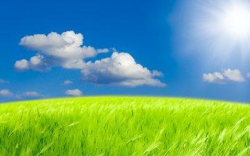 небо, трава, облака, природа, пейзаж, поле, неба, ландшафт, green field, на природе, солнечный свет