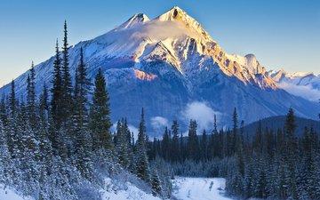 небо, дорога, деревья, горы, снег, закат, склон, ель, канада, провинция альберта, национальный парк банф