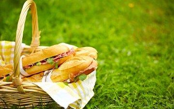 трава, природа, корзина, пикник, бутерброды