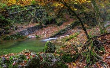 вода, камни, листва, осень, опадают, осен, листья