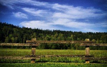 трава, деревья, природа, зелень, поле, забор, на природе, грин