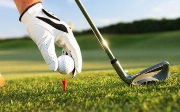 трава, рука, клюшка, мяч, гольф