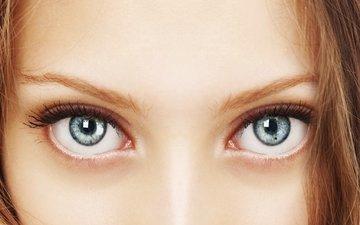 глаза, девушка, портрет, взгляд, волосы, лицо, женщина, взор