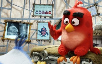 red, birds, island, feathers, movie, game, angry birds, angry, sugoi, subarashii, animated films, rovio entertainment, sudeikis, columbia pictures