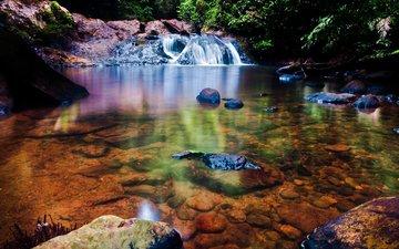 река, лес, водопад, дно, прозрачное, вудленд