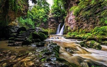 деревья, скалы, камни, ручей, кусты, водопад, швейцария, мох, течение, la tine de conflens