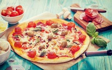 грибы, сыр, колбаса, помидоры, оливки, пицца, брынза, помидорами, быстрое питание