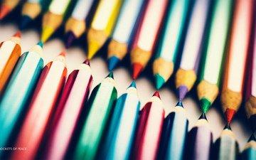 макро, синий, фиолетовый, карандаши, красный, фотограф, цветные, бьорн вундерлих, фотосъемка