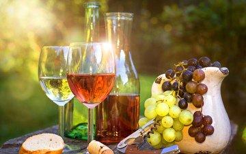 солнце, лучи, виноград, блики, вино, бокалы, вс, вина
