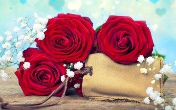 цветы, розы, букет, открытка, дерева, цветы, роз