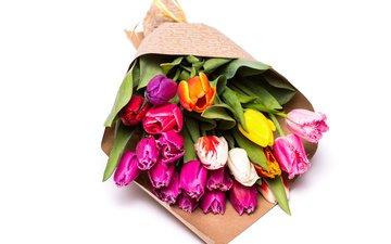 цветы, тюльпаны, розовые, желтые, тульпаны, букеты