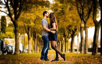 осень, пара, поцелуй, аллея, влюбленные, autumn love