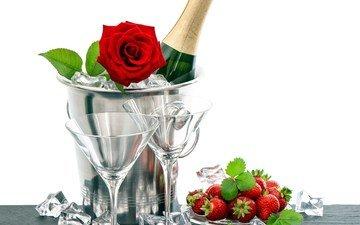 роза, клубника, романтика, бокалы, шампанское