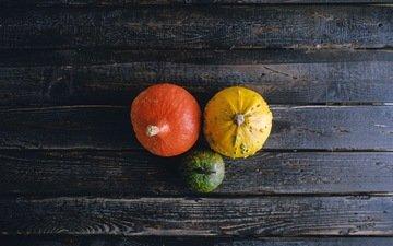 еда, осень, овощи, тыквы, дерева, опадают, осен, pumpkins