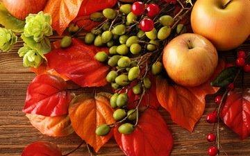листья, яблоки, осень, лесные ягоды, урожай, плоды, яблок, натюрморт, осен, листья