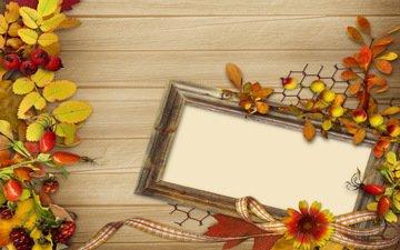 цветы, листья, фон, винтаж, осень, ягоды, рамка, осен, листья