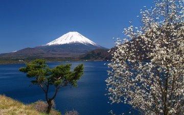 горы, море, япония, вулкан, японии, фуджи, фудзияма, остров хонсю