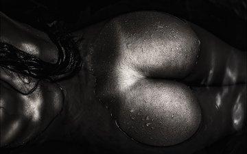 вода, девушка, капли, попа, мокрая, задница