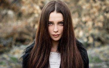 девушка, портрет, взгляд, модель, волосы, лицо, шатенка, алена