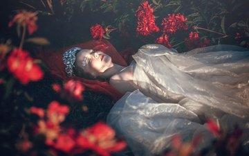 цветы, девушка, платье, лежит, сад, спит, блики, принцесса, спящая красавица, диадема, мертвая