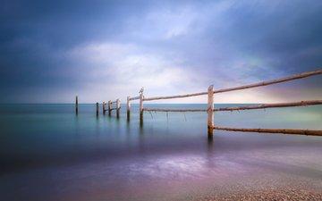 море, пляж, забор, чайка, птица, baltic sea