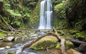 река, камни, лес, водопад, мох