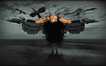 девушка, крылья, вороны