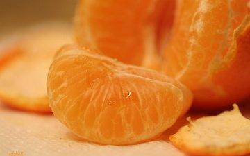 макро, фрукты, дольки, мандарины, цитрусы, сок