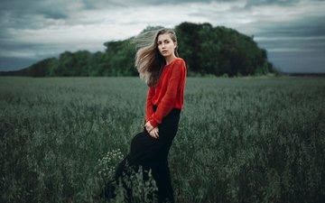 девушка, портрет, поле, взгляд, юбка, красавица, лицо, милая, классика, свитер, красивая, шатенка, на природе, дикая, прелесть, ветряная, грин, софия, ivan proskuri