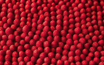 texture, macro, raspberry, berries