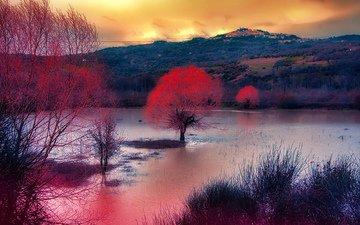 облака, деревья, озеро, горы, осень, зарево