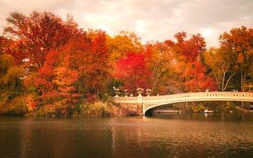 деревья, листья, люди, осень, лодка, зеркало, нью-йорк, соединённые штаты, центральный парк, bow bridge