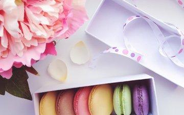 цветы, лента, коробка, сладкое, печенье, выпечка, макарун, миндальное