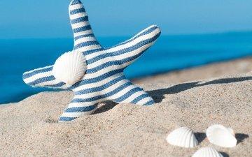 море, песок, пляж, ракушки, голубая, морская звезда, песка, seashells, летнее