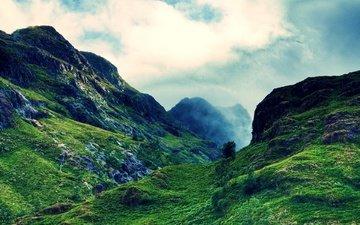 небо, облака, деревья, горы, камни, лес, высота, ущелье, шотландия