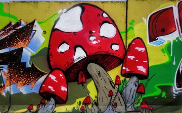 art, the city, wall, mushrooms, grafiti