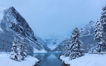 деревья, озеро, горы, снег, зима, ели, канада, альберта, провинция альберта, национальный парк банф, канадские скалистые горы, озеро луиз