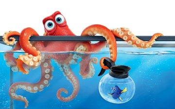octopus, cartoon, aquarium, fish, in finding dory, finding dory, dori