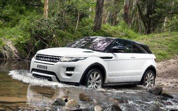 coupe, dynamic, range rover evoque, evoque, land rover, ewok, range rover