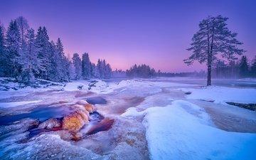 деревья, река, снег, лес, зима, финляндия, kiiminkijoki river, река кииминкийоки