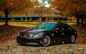 leaves, autumn, black, tuning, infiniti, g35s