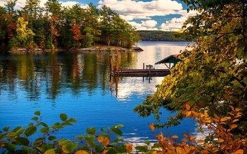 облака, деревья, озеро, берег, лес, ветки, листва, осень, причал, сша, нью-йорк, остров, пристань, лейк-джордж, нью - йорк