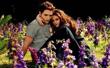 glade, kristen stewart, meadow, twilight, robert pattinson, beautiful, lovers, twilight saga