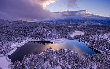 небо, облака, деревья, озеро, снег, природа, лес, зима, сша, аризона, штат аризона, goldwater lake, озеро голдуотер, прескотт, озеро голдуотера
