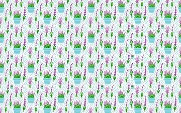 flowers, lavender, vases