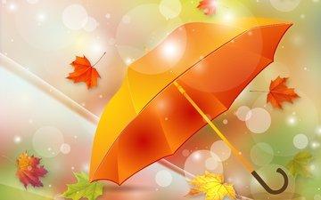 листья, осень, зонтик