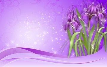 цветы, рисунок, фиолетовые, ирисы